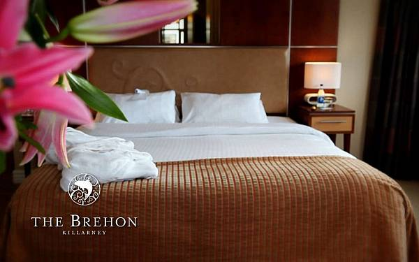 THE BREHON HOTEL SUITES
